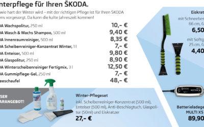 Winterpflege für Ihren ŠKODA