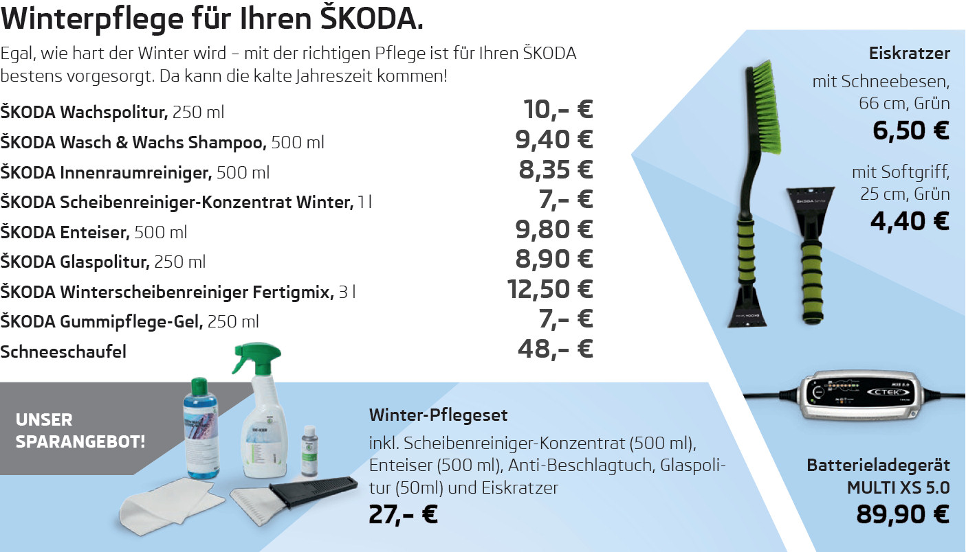 winterpflege f r ihren koda skodapartner skoda autohaus berlin. Black Bedroom Furniture Sets. Home Design Ideas