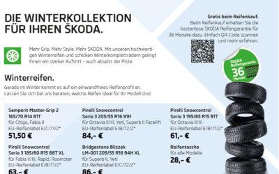 Die Winterkollektion für Ihren ŠKODA